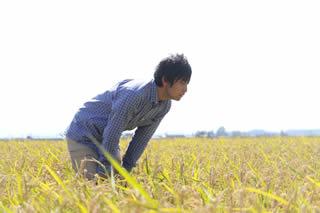 幻の米さわのはな生産者
